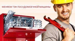 ТЭН для посудомоечных машин - замена своими руками