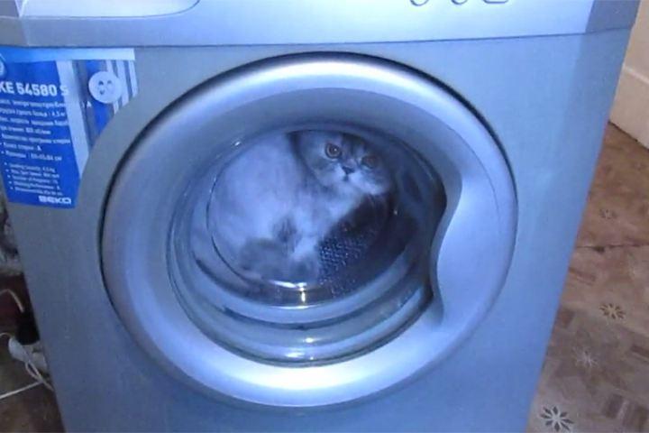 В стиральную машину попал посторонний предмет - как достать?