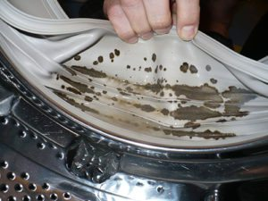 Средство для очистки стиральной машины от плесени