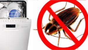 Как вывести тараканов в посудомойке