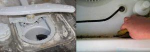 посудомоечная машина заражена плесенью