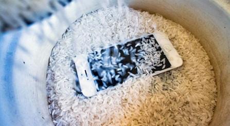засовываем телефон в рис