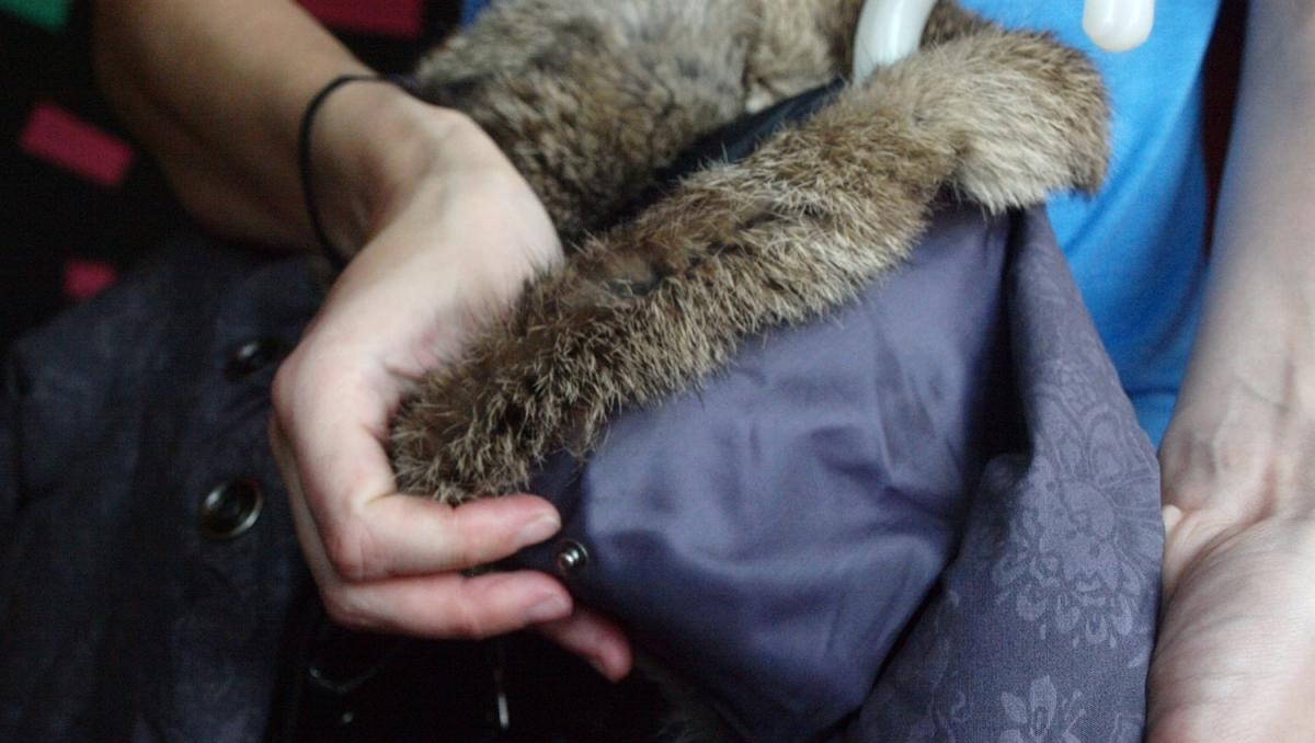 убираем меховой ворот синтепоновой куртки