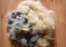 Как очистить стиральную машину от шерсти животных?
