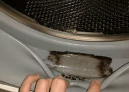 Как почистить манжету в стиральной машине от плесени?
