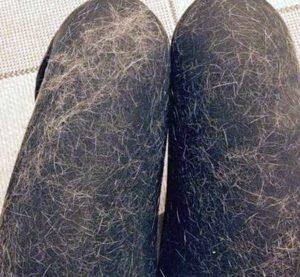 Как отстирать шерсть животных в стиральной машине?