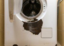 Покрасить ржавчину на стиральной машине?
